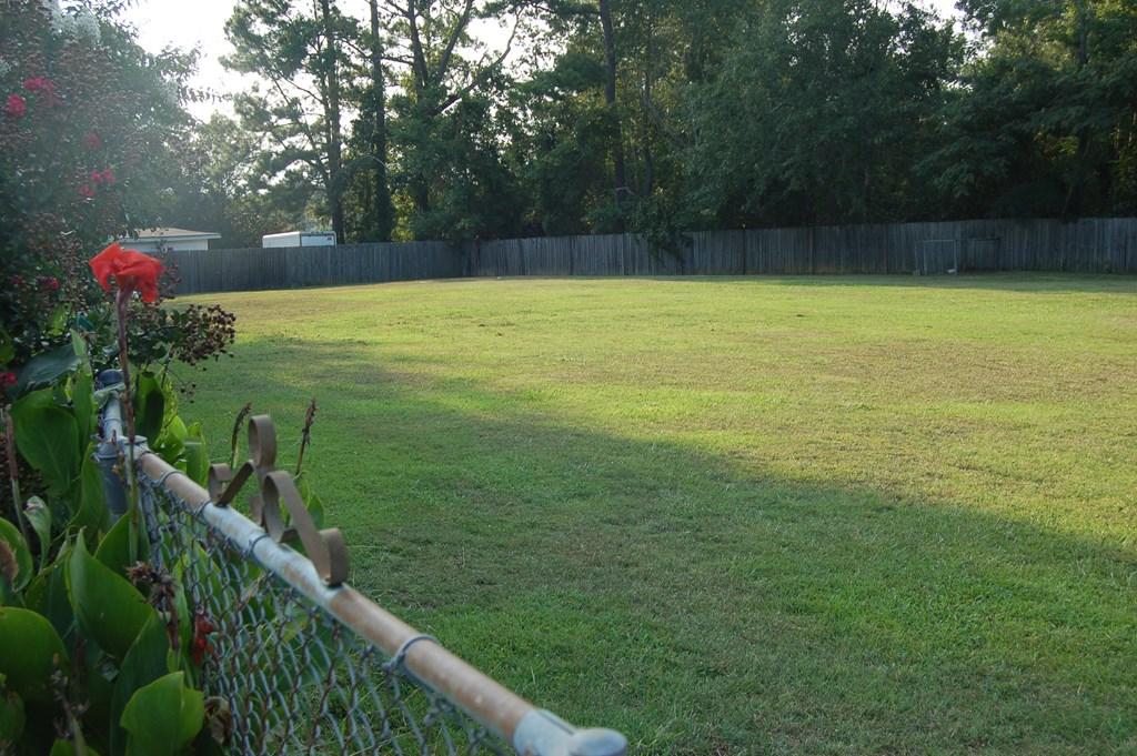 Fenced Back Yard